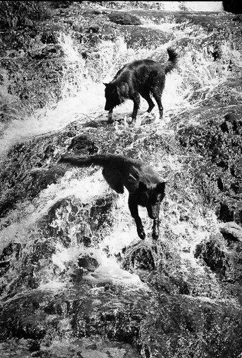 Photographe - Isabelle Pauly - photo 98
