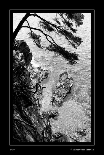 Photographe - christophe Martin  - photo 10