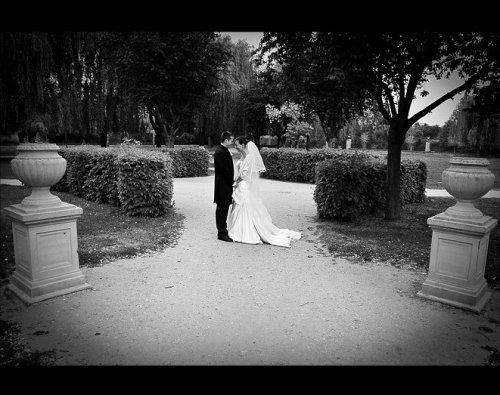 Photographe mariage - David & Vaiki Photographie - photo 35