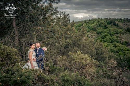Photographe mariage - David Bignolet Photographe - photo 83