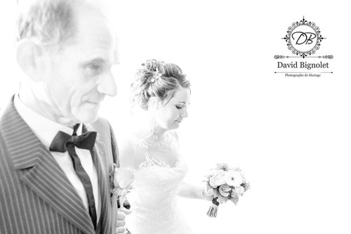 Photographe mariage - David Bignolet Photographe - photo 87