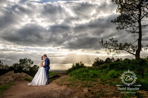 Photographe mariage - David Bignolet Photographe - photo 90