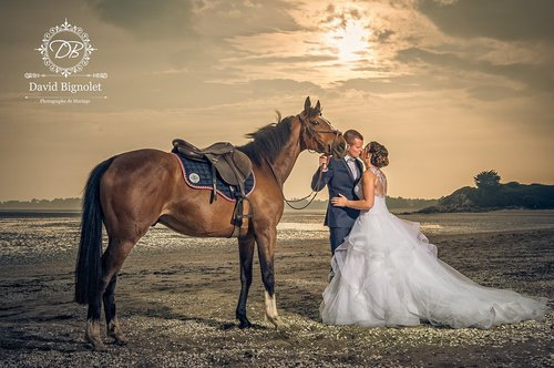 Photographe mariage - David Bignolet Photographe - photo 75