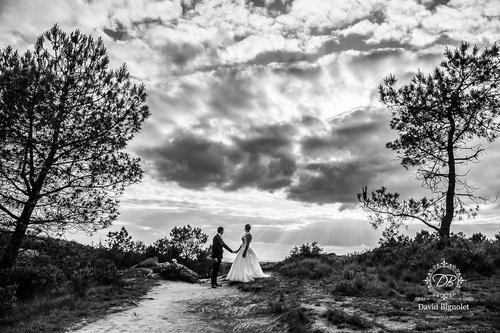 Photographe mariage - David Bignolet Photographe - photo 80