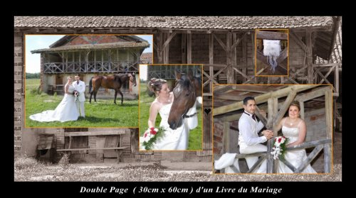 Photographe mariage - Eurl Alizé - photo 3