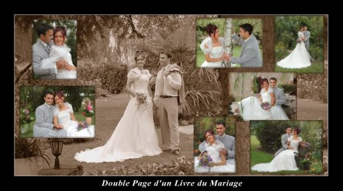 Photographe mariage - Eurl Alizé - photo 5