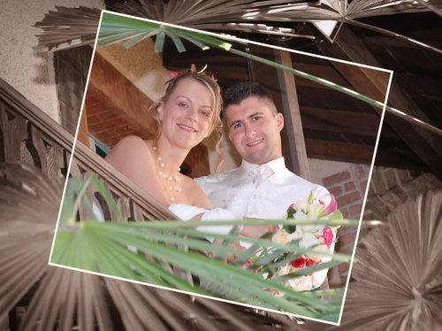 Photographe mariage - Eurl Alizé - photo 13