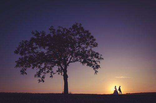 Photographe mariage - Gregory Kauffmann Photographie - photo 5