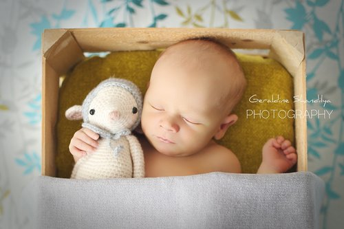 Photographe - Geraldine Shandilya Photography - photo 3