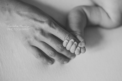 Photographe - Geraldine Shandilya Photography - photo 109