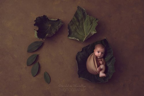 Photographe - Geraldine Shandilya Photography - photo 117