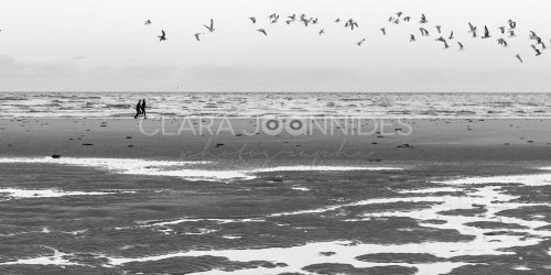 Photographe - Clara Joannides - photo 112