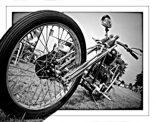 Photographe - ROLLNFLASH PHOTOGRAPHIE - photo 11