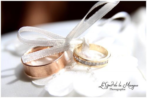 Photographe mariage - Le Gout de la Mangue - photo 8