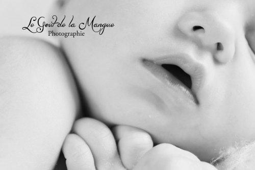 Photographe mariage - Le Gout de la Mangue - photo 4