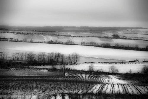 Photographe - imaging - photo 13