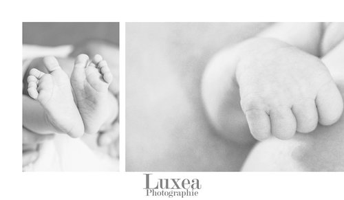 Photographe mariage - Luxea Photographie - photo 26