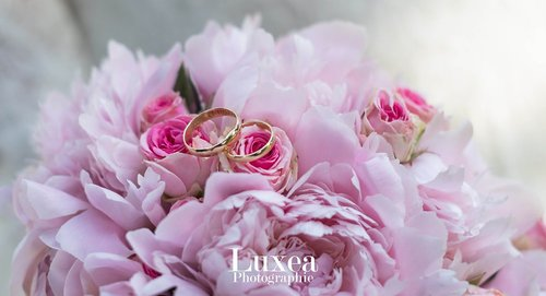 Photographe mariage - Luxea Photographie - photo 31