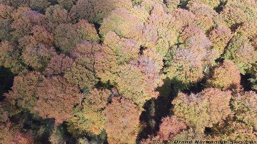 Photographe - Drone-malin - photo 4