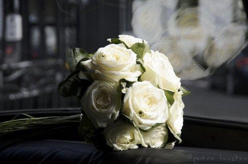 Photographe mariage - Pedro Loustau Photographie - photo 34
