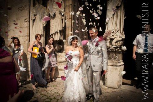 Photographe mariage - Paradis Events - photo 49