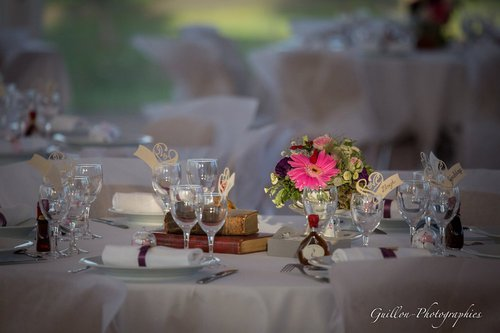 Photographe mariage -  GUILLON-PHOTOGRAPHIES - photo 10