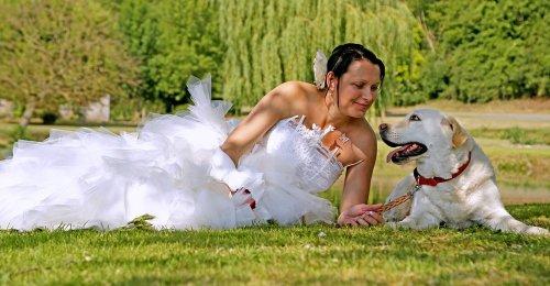 Photographe mariage - DANDY Eric - photo 41