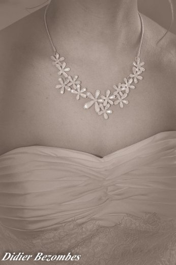 Photographe mariage - DIDIER BEZOMBES PHOTOGRAPHE  - photo 11