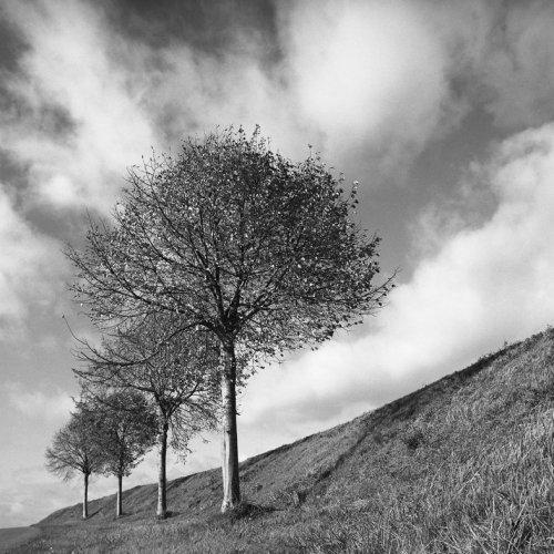 Photographe - Patrice Valette - photo 13