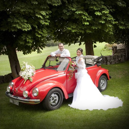 Photographe mariage - PHOTO TREVIS - photo 7