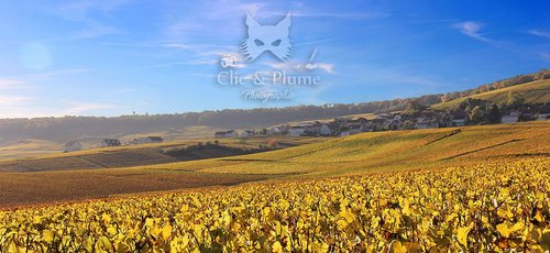 Photographe mariage - Clic & Plume - Carine CHARLIER - photo 3