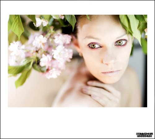 Photographe - Matthieu Roggero - photo 17