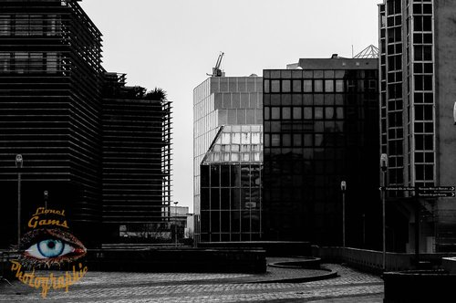 Photographe - Lionel Gams Photographie - photo 104