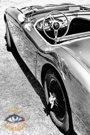Photographe - Lionel Gams Photographie - photo 136