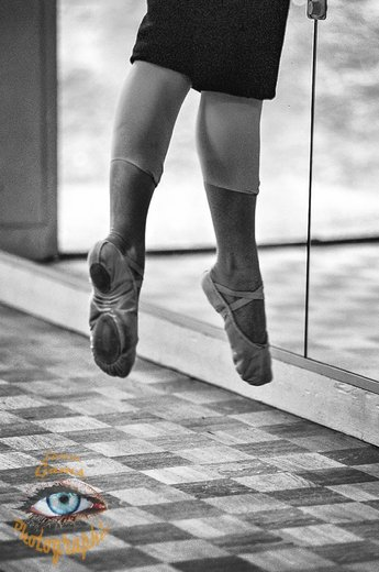 Photographe - Lionel Gams Photographie - photo 79