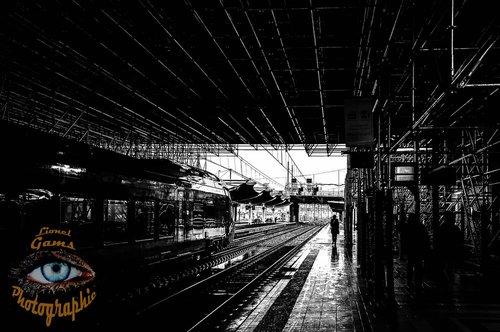 Photographe - Lionel Gams Photographie - photo 66