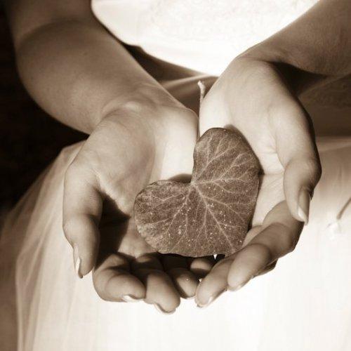 Photographe mariage - OLIVIER LOIRAT -  WEBPORTAGE - photo 48