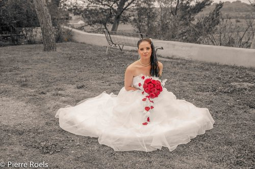 Photographe mariage - LES PHOTOS DE L'AMI PIERROT - photo 2