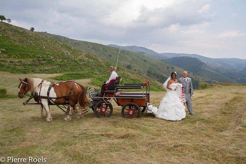 Photographe mariage - LES PHOTOS DE L'AMI PIERROT - photo 134