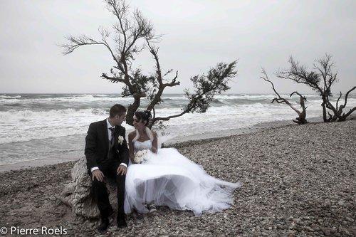 Photographe mariage - LES PHOTOS DE L'AMI PIERROT - photo 83