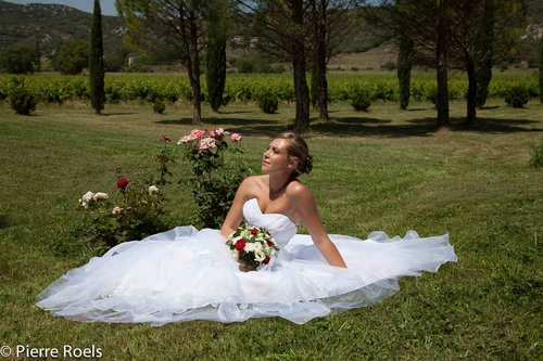Photographe mariage - LES PHOTOS DE L'AMI PIERROT - photo 65