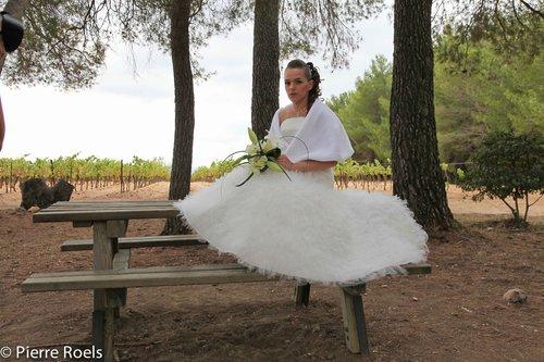 Photographe mariage - LES PHOTOS DE L'AMI PIERROT - photo 176