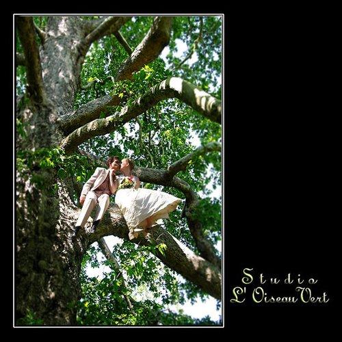 Photographe mariage - Studio L' Oiseau Vert - photo 99