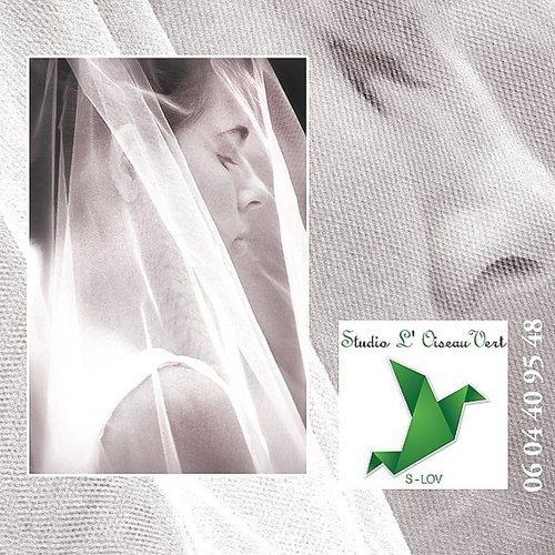 Photographe mariage - Studio L' Oiseau Vert - photo 87