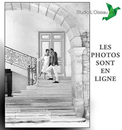 Photographe mariage - Studio L' Oiseau Vert - photo 100