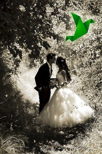 Photographe mariage - Studio L' Oiseau Vert - photo 91