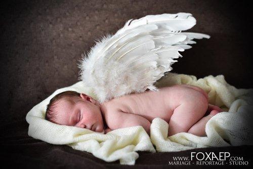 Photographe - FOXAEP - Melly - photo 1