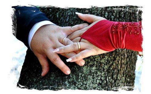 Photographe mariage - Monniot Jacqueline - photo 162