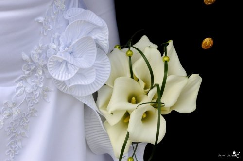 Photographe mariage - Monniot Jacqueline - photo 195