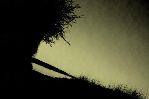 Photographe - Allix manon - photo 26